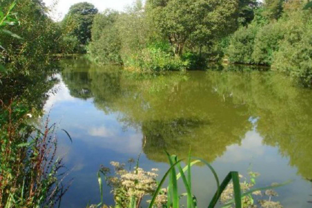 Coarse fishing lake on site